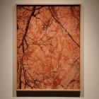Davida Nemeroff, <em>Red Ochre</em>, inkjet print, 2010, installation view