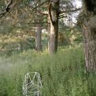 Geoffrey Pugen, </em>Sphenoidal Fores</em>t, 24×35, 2010