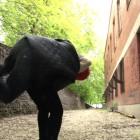 Linda Duvall, <em>The Toss</em>, 2012, HD Video still, detail. Camera: Jason Ebank