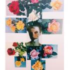 Jennifer Murphy, Roses, 2015