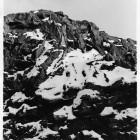 Andrew Savery-Whiteway, Fake Mountain 1, 2016