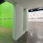 Installation view, Luis Jacob, <em>Habitat</em>, 2017. Documentation: Toni Hafkenscheid.
