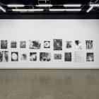 Eileen Quinlan, <em>Enough</em>, silver gelatin prints. Installation view at Gallery TPW. Documentation: Toni Hafkenscheid.